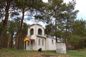 церковь Елисея Лавришевского